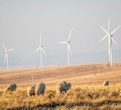 AFRIQUE DU SUD : le parc éolien Golden Valley (123 MW) de BioTherm entre en service© Biotherm Energy