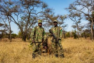 Rangers in the Akagera National Park in Rwanda © African Parks