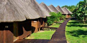 AFRIQUE : tourisme durable et biodiversité, un mariage de raison©Photosky/Shutterstock