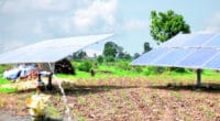 UGANDA: FAO provides Kalungu with four solar-powered irrigation systems©Tofan Singh Chouhan/Shutterstock