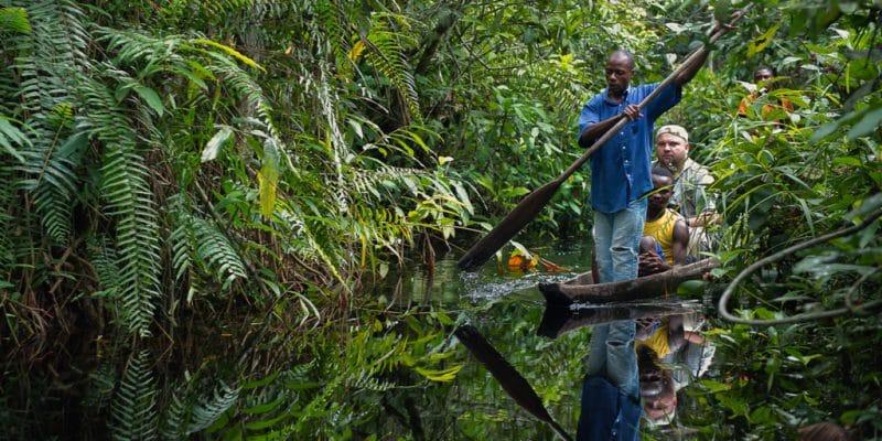 AFRIQUE : tourisme durable et biodiversité, un mariage de raison©Sergey Uryadnikov/Shutterstock
