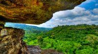 GHANA : le projet « LEAN » pour la préservation de la biodiversité©Felix Lipov/Shutterstock