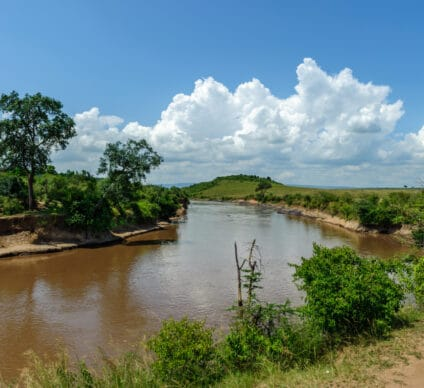 TANZANIA/KENYA: A guide to the rational use of water from the Mara River©lewald/Shutterstock