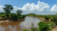 TANZANIE/KENYA : un guide pour l'utilisation rationnelle de l'eau de la rivière Mara©lewald/Shutterstock