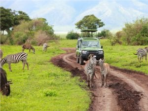 AFRICA: sustainable tourism and biodiversity, a marriage of reason©BlueOrange Studio/Shutterstock