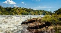 TANZANIA: Dodoma approves $140m for the Malagarasi hydropower plant© Dennis Wegewijs/Shutterstock
