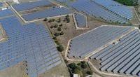COTE D'IVOIRE : un appel d'offres pour les centrales solaires de Laboa et de Touba © GLF Media/Shutterstock
