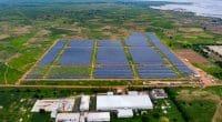 SÉNÉGAL : les centrales solaires de Kahone et de Kaél entrent en service commercial © Engie