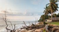 BÉNIN/TOGO : l'IDA prête 36 M$ la lutte contre l'érosion côtière©Pvince73/Shutterstock