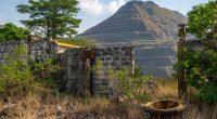 AFRIQUE DE L'OUEST : l'UE soutient la préservation des écosystèmes des Monts Nimba©mbrand85/Shutterstock