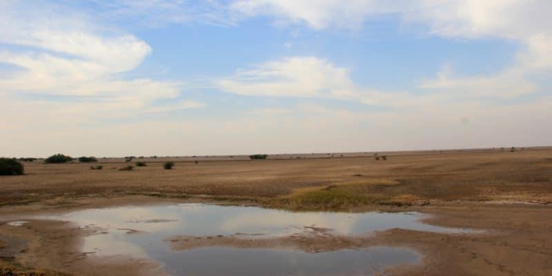 NIGERIA: Government's key role in ecosystem restoration©Dhapa Harshadbhai/Shutterstock