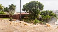 BÉNIN : la BID prête 105,6 M$ pour le drainage des eaux pluviales à Cotonou©David Steele/Shutterstock