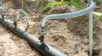 NAMIBIE : Paris soutien la gestion des eaux souterraines en réponse à la sécheresse ©Ansario/Shutterstock