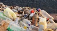 CAMEROUN : WasteAid forme 164 jeunes au recyclage des déchets plastiques©yoamod/Shutterstock