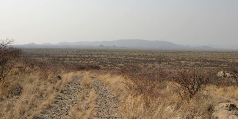 AFRIQUE: 9 pays bénéficient d'un programme de restauration des terres arides ©Ralf Herschbach/Shutterstock