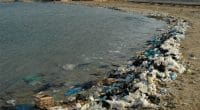 NORTH AFRICA: Plastic Odyssey promotes recycling of ocean plastics©Oleg Kovtun Hydrobio/Shutterstock