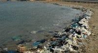 AFRIQUE DU NORD : Plastic Odyssey encourage le recyclage du plastique issu des océans©Oleg Kovtun Hydrobio/Shutterstock