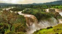 World Environment Day: Restoring ecosystems in Africa©Aleksandra H. Kossowska/Shutterstock
