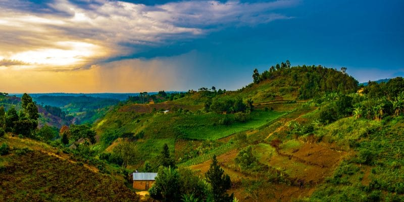 AFRICA: Reconciling agriculture and biodiversity is possible©Ashim D Silva/Shutterstock