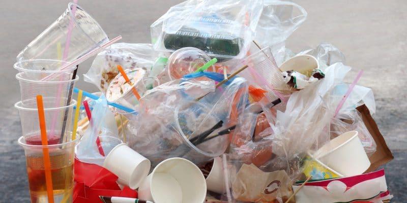 RWANDA : la PSF finance la gestion des plastiques à usage unique©DeawSS/Shutterstock