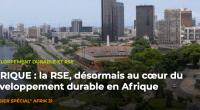 DOSSIER SPÉCIAL AFRIQUE RSE