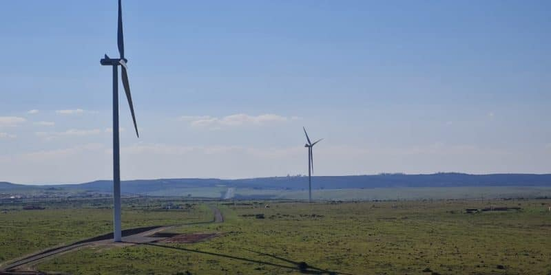 AFRIQUE DU SUD : EDF connecte son parc éolien de Wesley-Ciskei au réseau d'Eskom © EDF