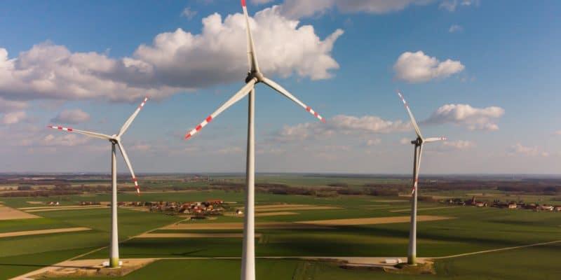 AFRIQUE DU SUD : le parc éolien d'Oyster Bay débute ses opérations commerciales © DenisNata/Shutterstock