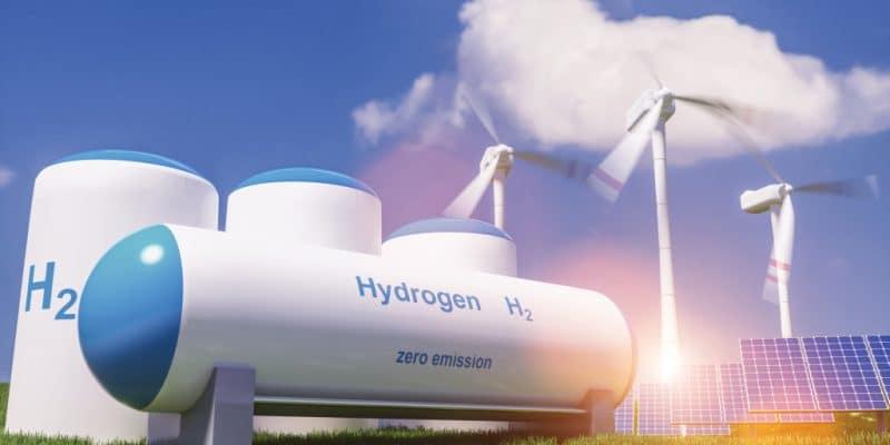 ÉGYPTE : l'italien ENI se diversifie, va produire et exporter l'hydrogène vert ©Alexander Kirch/Shutterstock