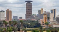 RSE : l'engagement des entreprises pour contribuer à l'atteinte des ODD en Afrique© Kirill Skorobogatko/Shutterstock
