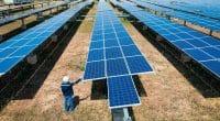 SÉNÉGAL : GreenYellow installera un système solaire PV de 1,56 MWc pour Senico© Kampan/Shutterstock