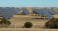 AFRIQUE : le programme Desert to Power est lancé grâce à une subvention du FAD © Karel Stipek/Shutterstock