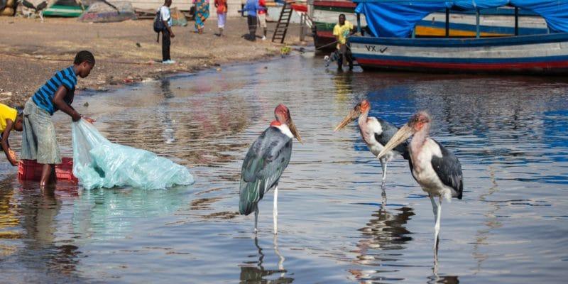 OUGANDA : le soutien à la campagne Océans propres pour réduire la pollution plastique ©Borkowska Trippin/Shutterstock