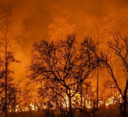 MADAGASCAR: a geoportal alert against bushfires ©Toa55/Shutterstock©Toa55/Shutterstock