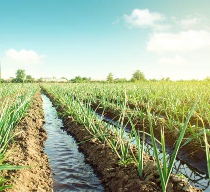 KENYA: New Kilimani Galana Buttress irrigation dam comes into operation©Andrii Yalanskyi/Shutterstock
