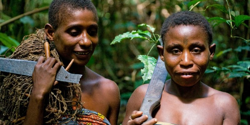 CENTRAL AFRICA: integrating communities into protected area management©GUDKOV ANDREY/Shutterstock