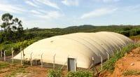SENEGAL: 60,000 biodigesters to produce biogas from faecal sludge ©Marco Paulo Bahia Diniz/Shutterstock