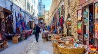 MAROC : le projet Mogagreen pour la gestion des déchets recyclables à Essaouira©Ana Flasker/Shutterstock