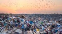 IVORY COAST: A €76m bond issue for the Akouédo landfill © Roman Mikhailiuk/Shutterstock