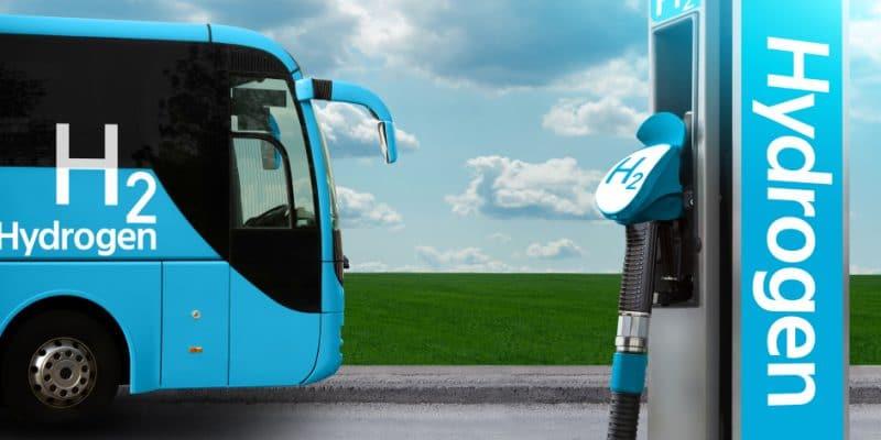 EGYPT: Germany's Man and Taqa team up for green hydrogen pilot project © Scharfsinn/Shutterstock