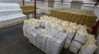 AFRIQUE : Bolloré met la durabilité au service de la logistique et du transport ©Bolloré Transport & Logistics