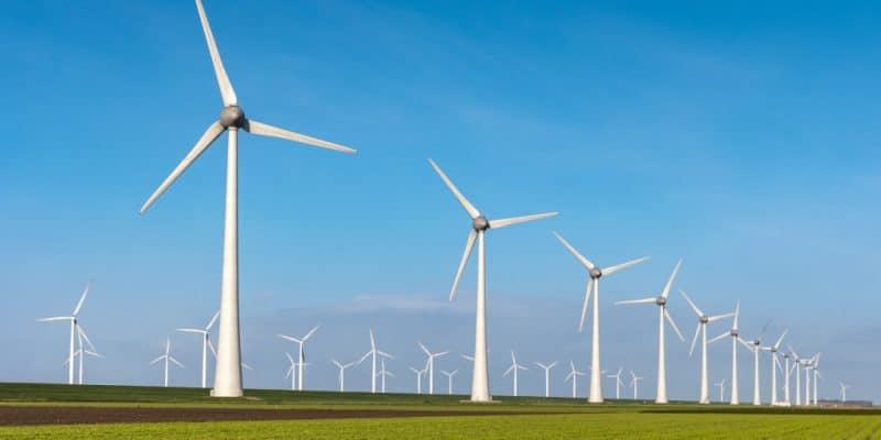 AFRIQUE DU SUD : le 5e cycle du REIPPP enregistre 102 propositions pour 2,6 GW © fokke baarssen/Shutterstock