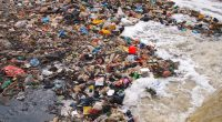 TUNISIA: Tinja joins WWF initiative to reduce plastic pollution©Nicram Sabod/Shutterstock
