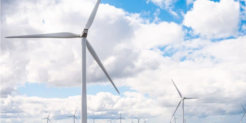 AFRIQUE DU SUD : Revego rachète les actifs de Metier dans 3 parcs éoliens de 360 MW © petrmalinak/Shutterstock
