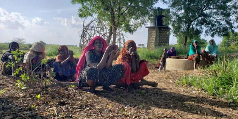 GAMBIE : le changement climatique affecte l'agriculture et le tourisme©Chaton Chokpatara/Shutterstock
