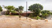 AFRIQUE : les inondations déplaceront 2,7 millions de personnes d'ici à 2050©David Steele/Shutterstock