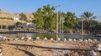 ÉGYPTE : Emirates NBD finance la réutilisation des eaux usées agricoles à Al-Hamam©Mohammad Arar/Shutterstock