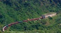 GUINÉE : le projet d'exploitation du fer de Simandou menace les chimpanzés de l'ouest©Duc Huy Nguyen/Shutterstock