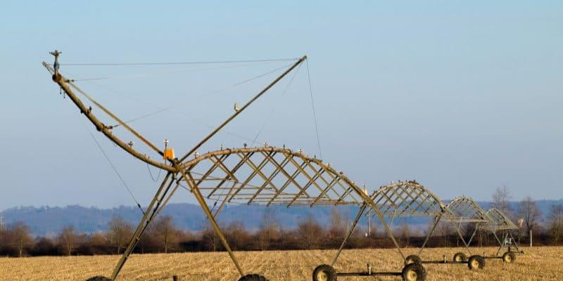ÉGYPTE : Hassan Allam construit un système d'irrigation à Toshka©ldambies/Shutterstock