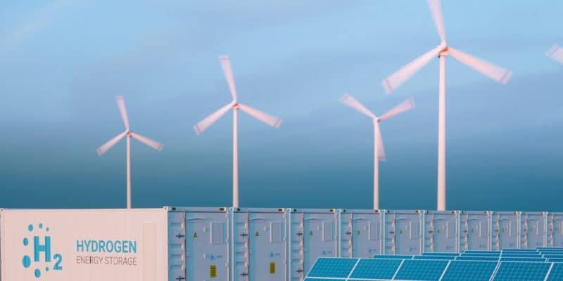 NAMIBIE : Berlin soutient la recherche sur l'hydrogène vert avec 40 M€© petrmalinak/Shutterstock