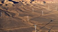 ÉGYPTE : Lekela connecte une partie de son parc éolien de West Bakr au réseau © Jose Luis Stephens/Shutterstock